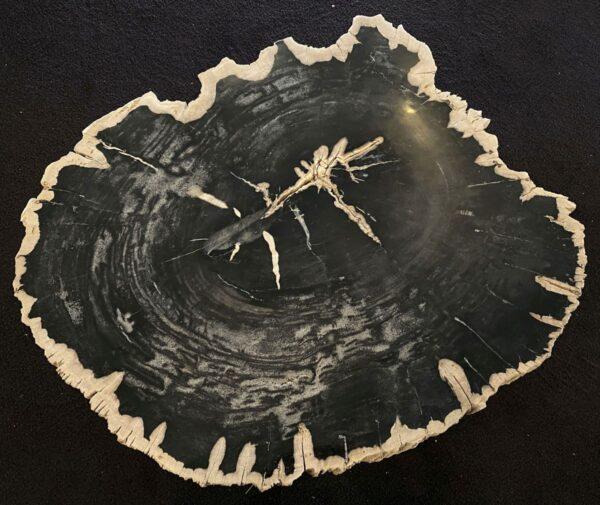 Couchtisch versteinertes Holz 34162