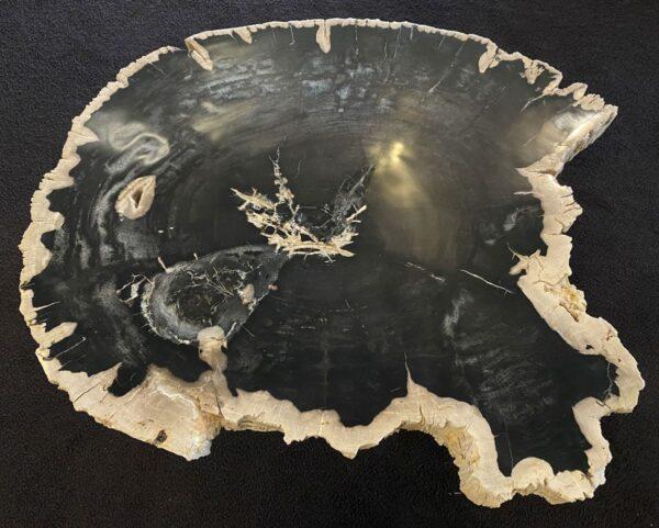 Couchtisch versteinertes Holz 34164
