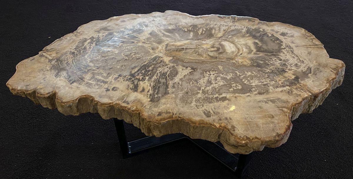 Couchtisch versteinertes Holz 34168
