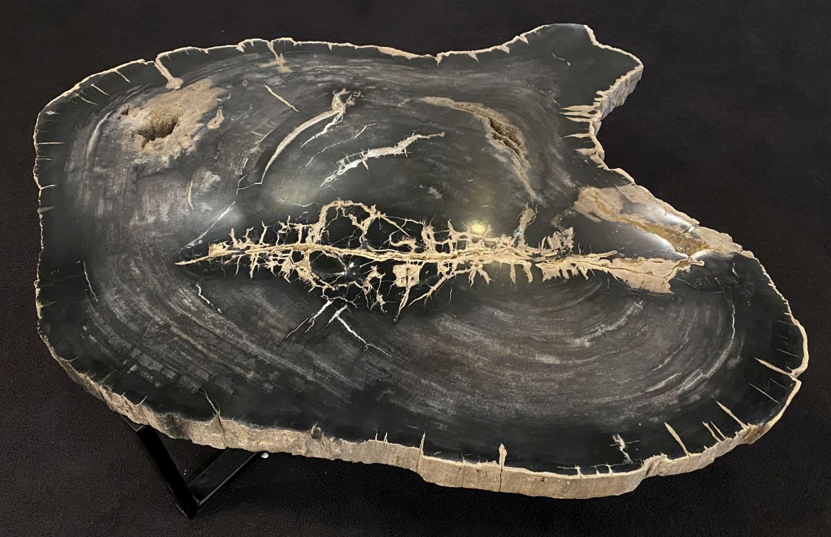 Couchtisch versteinertes Holz 34170