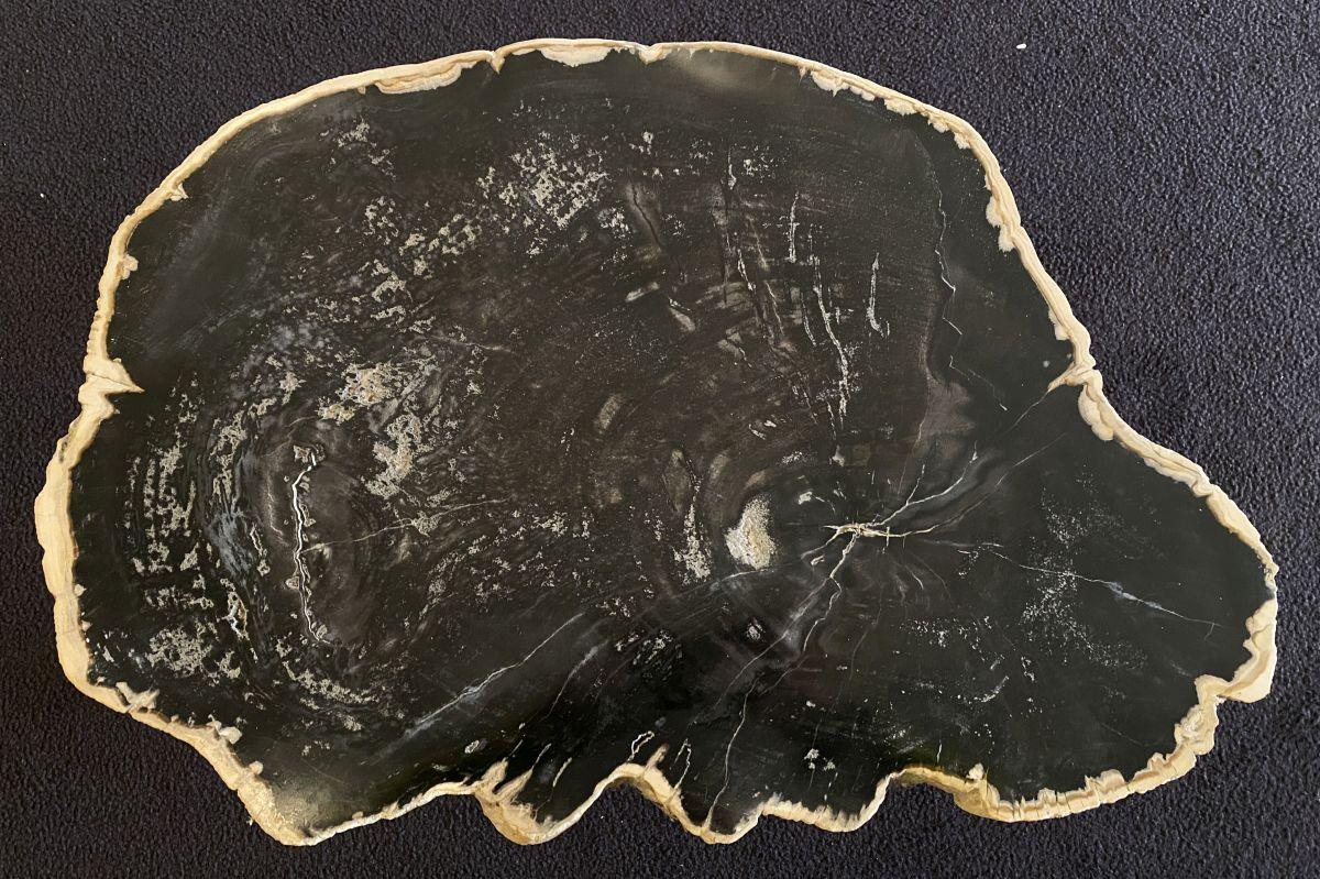 Couchtisch versteinertes Holz 34176
