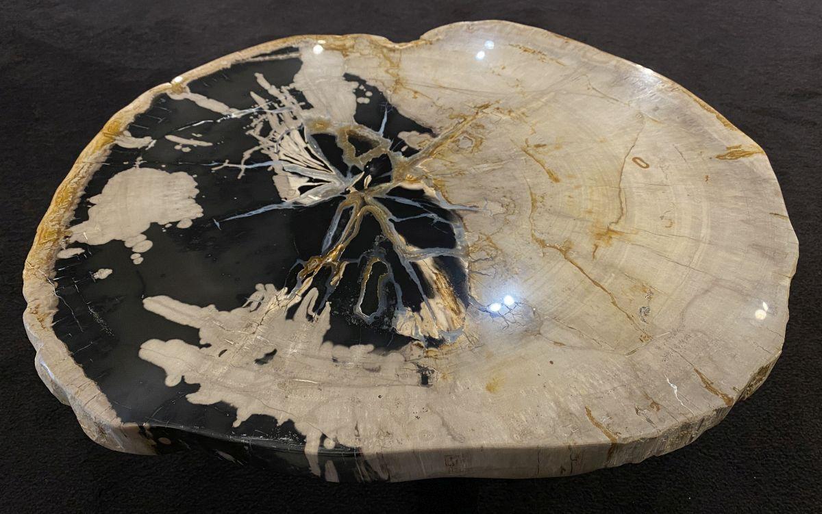 Couchtisch versteinertes Holz 34186