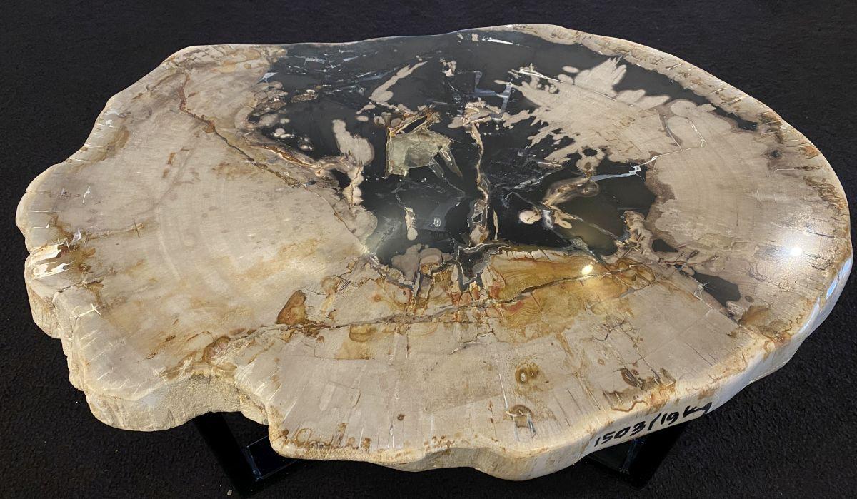 Couchtisch versteinertes Holz 34188