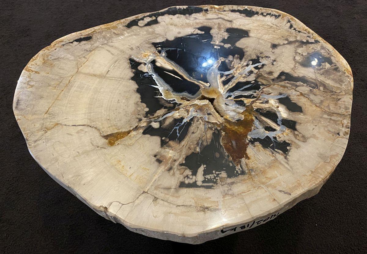 Couchtisch versteinertes Holz 34189