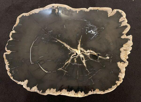 Couchtisch versteinertes Holz 34193
