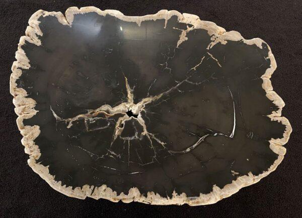 Couchtisch versteinertes Holz 34194
