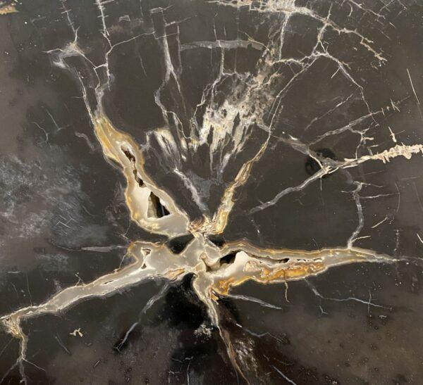 Couchtisch versteinertes Holz 34196