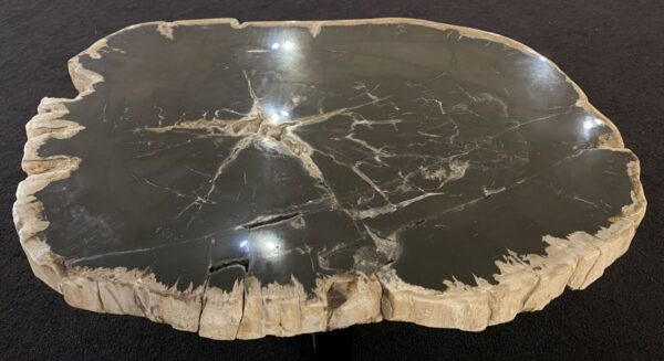 Couchtisch versteinertes Holz 34198