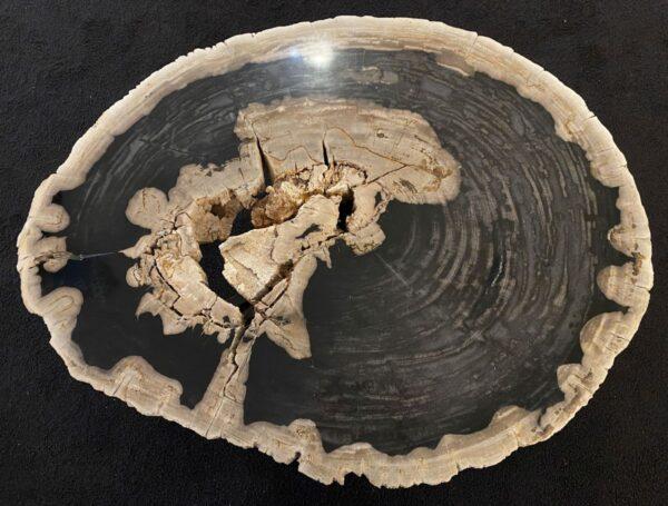 Couchtisch versteinertes Holz 34204