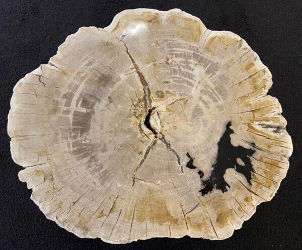 Couchtisch versteinertes Holz 34228