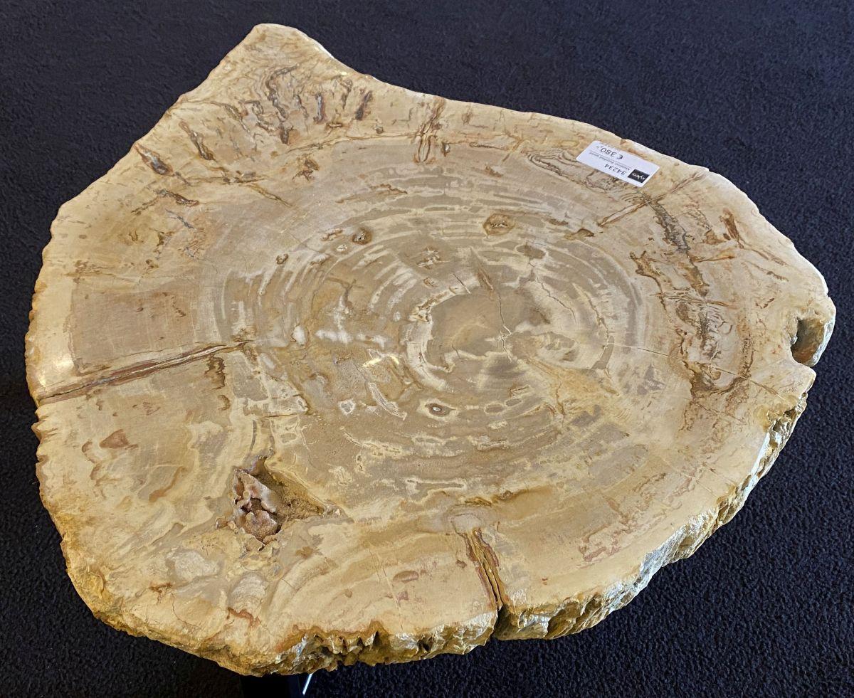 Couchtisch versteinertes Holz 34234