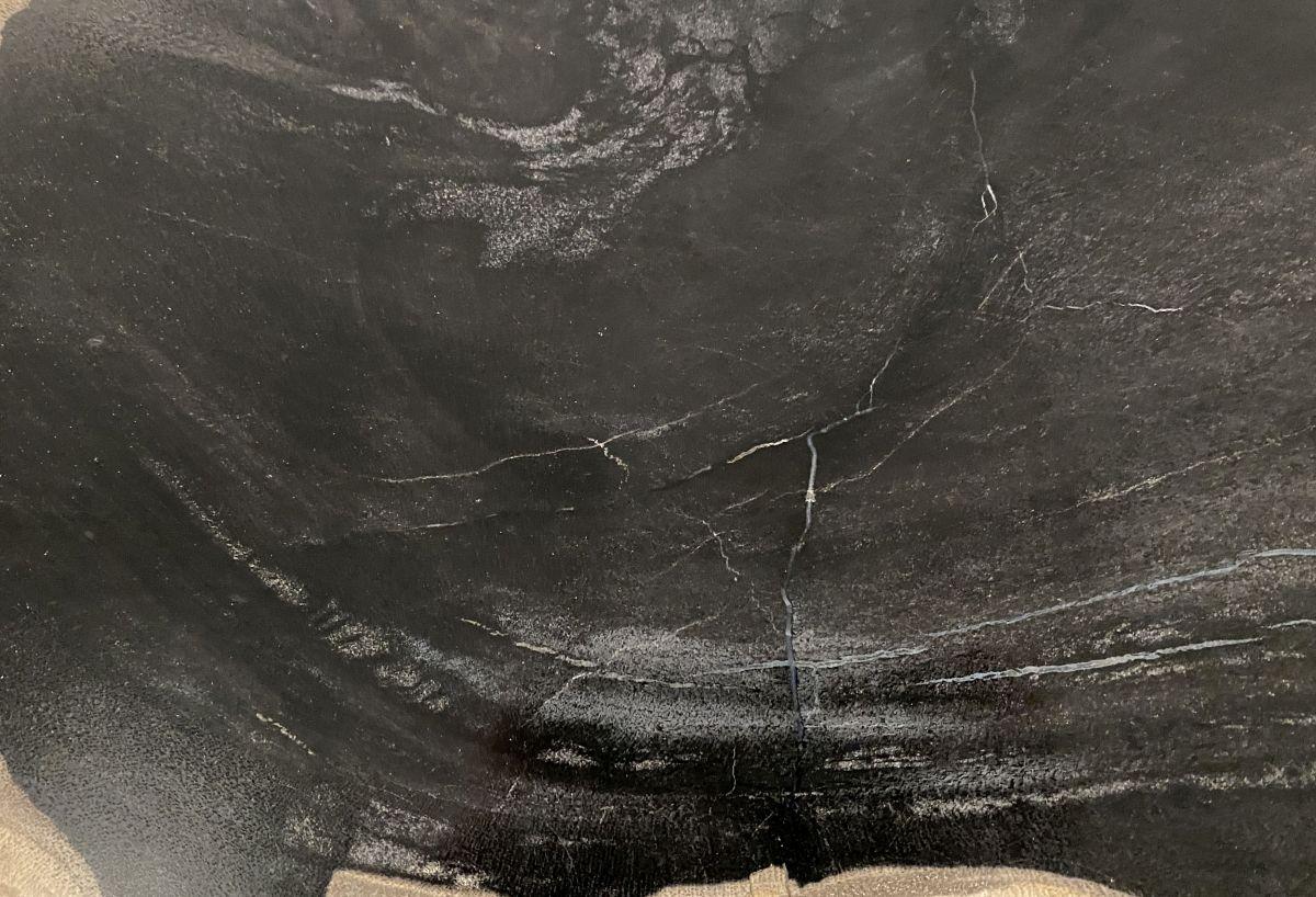 Couchtisch versteinertes Holz 34255
