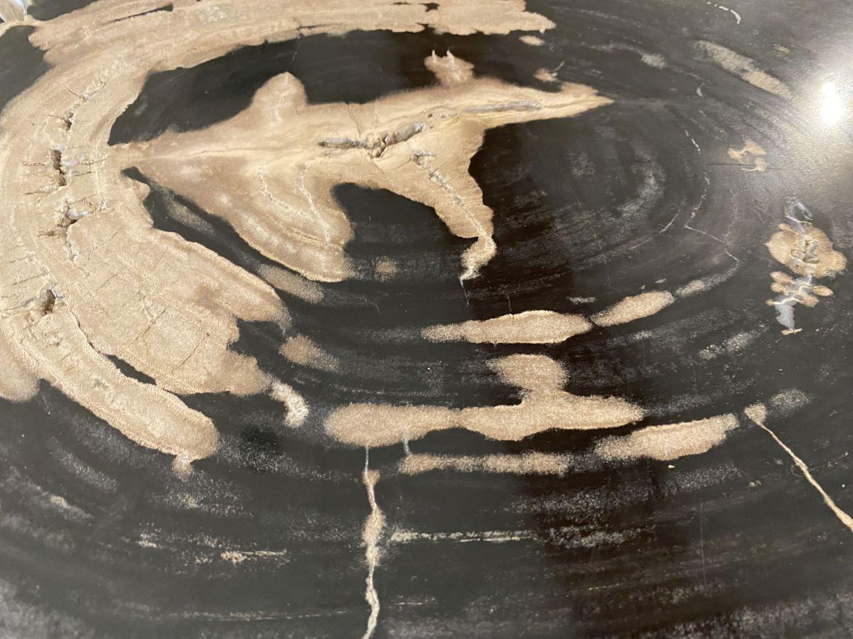 Couchtisch versteinertes Holz 34257