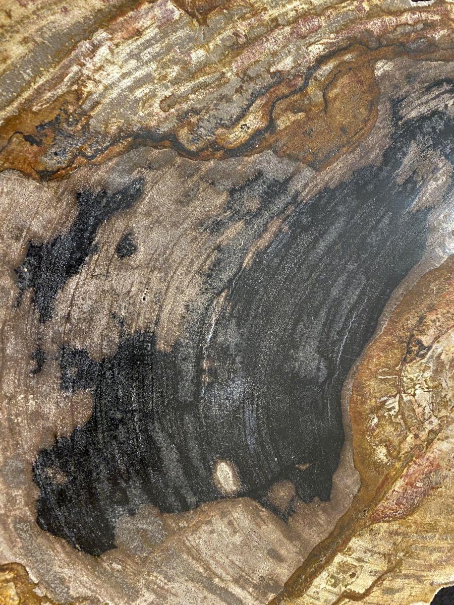 Couchtisch versteinertes Holz 34262