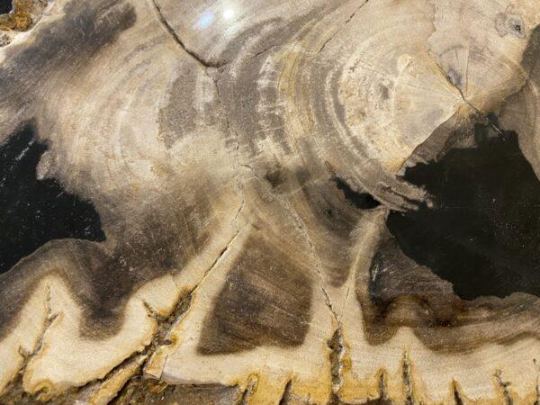 Couchtisch versteinertes Holz 34264