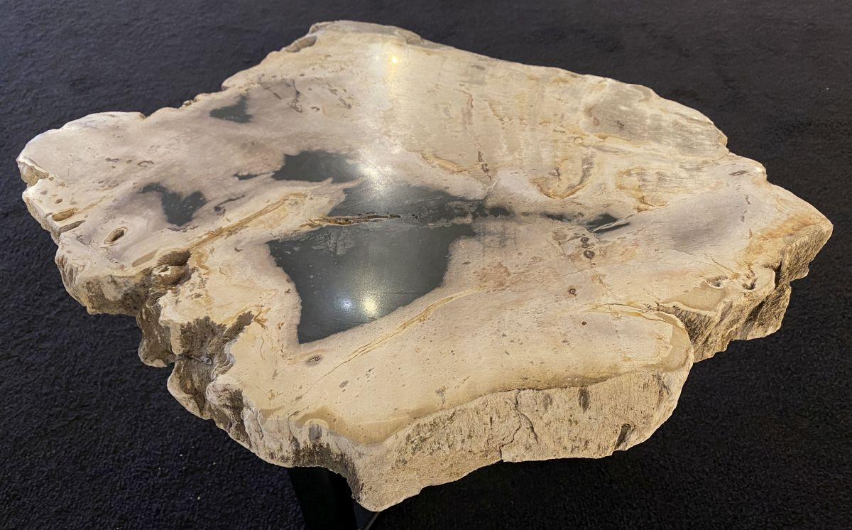 Couchtisch versteinertes Holz 34268