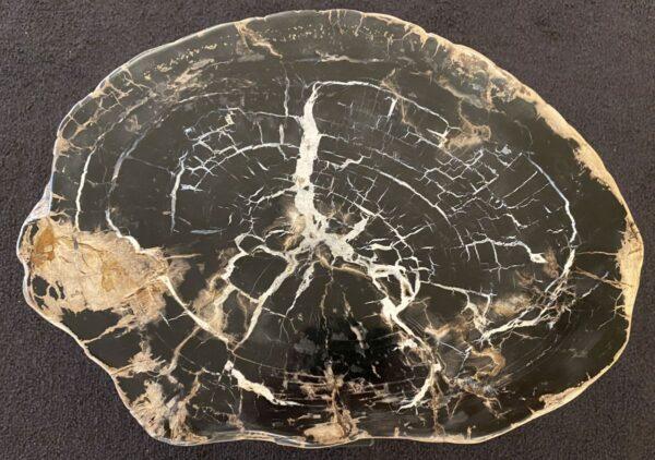 Couchtisch versteinertes Holz 34291