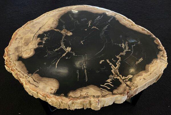 Couchtisch versteinertes Holz 34300