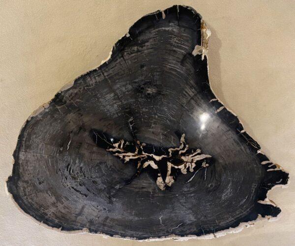 Mesa de centro madera petrificada 34124