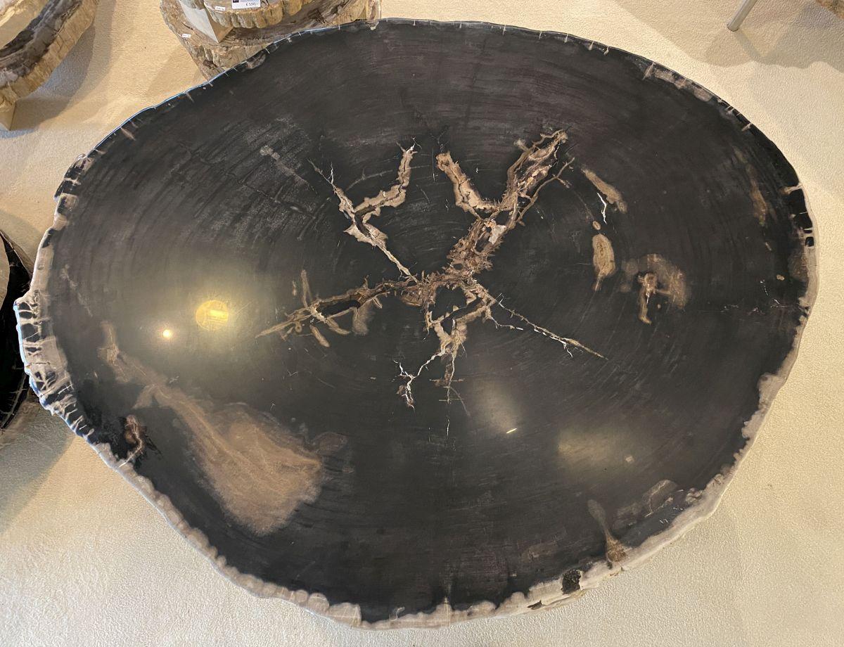 Mesa de centro madera petrificada 34157