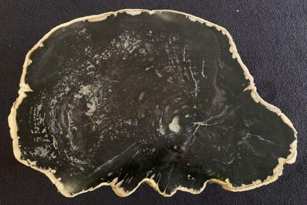 Mesa de centro madera petrificada 34176