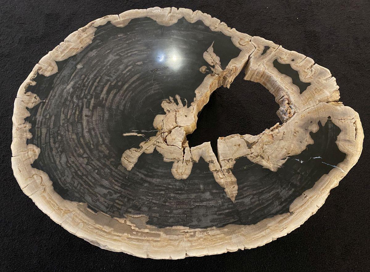 Mesa de centro madera petrificada 34201