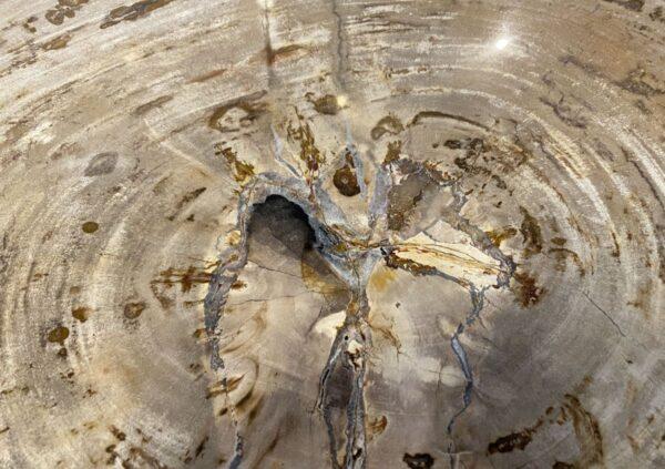 Mesa de centro madera petrificada 34213