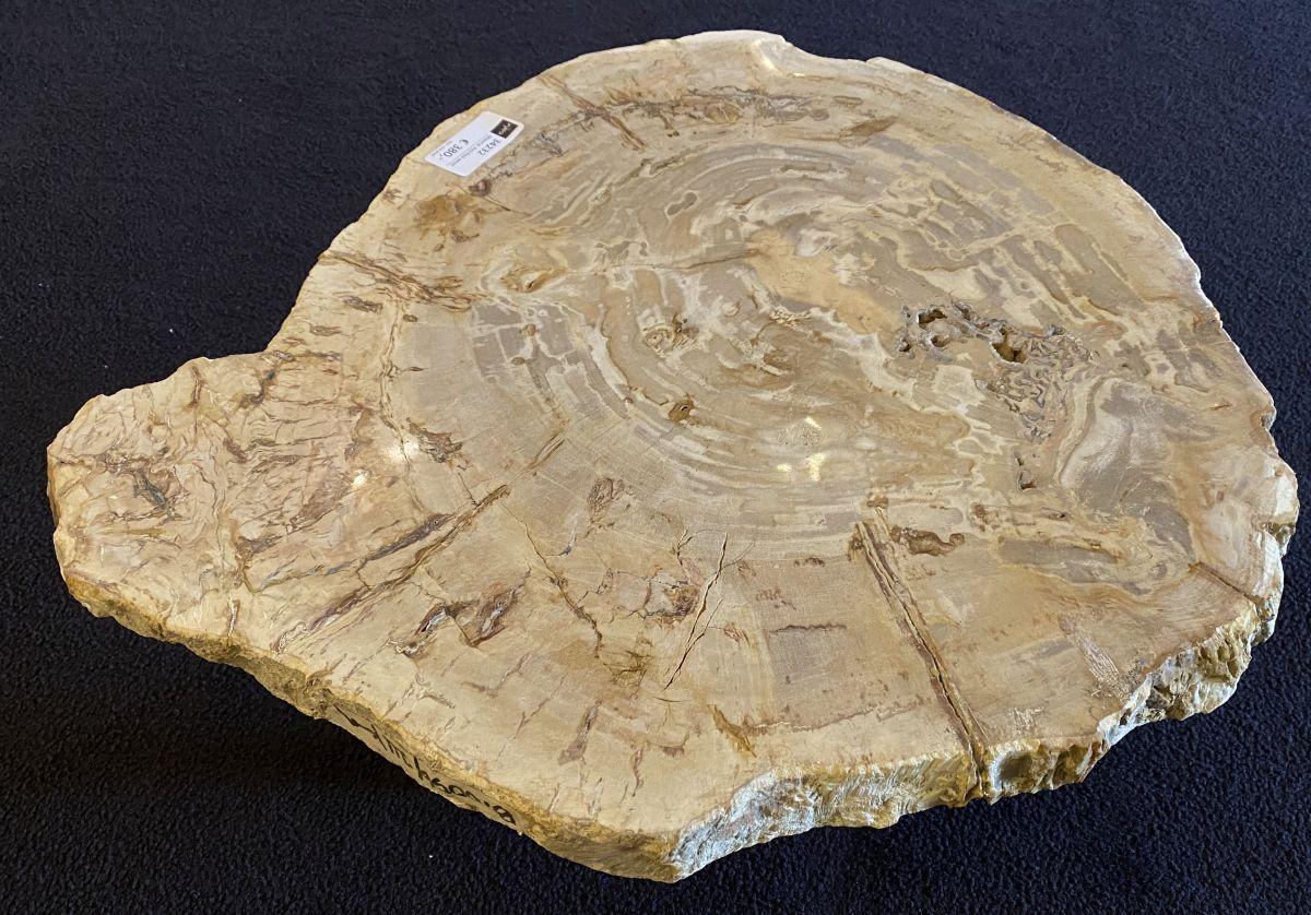 Mesa de centro madera petrificada 34232
