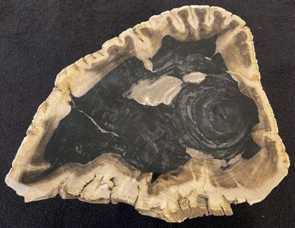 Mesa de centro madera petrificada 34238
