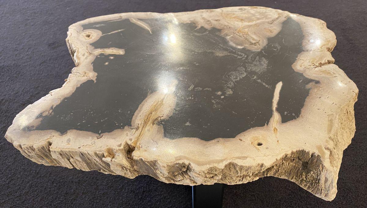 Mesa de centro madera petrificada 34247