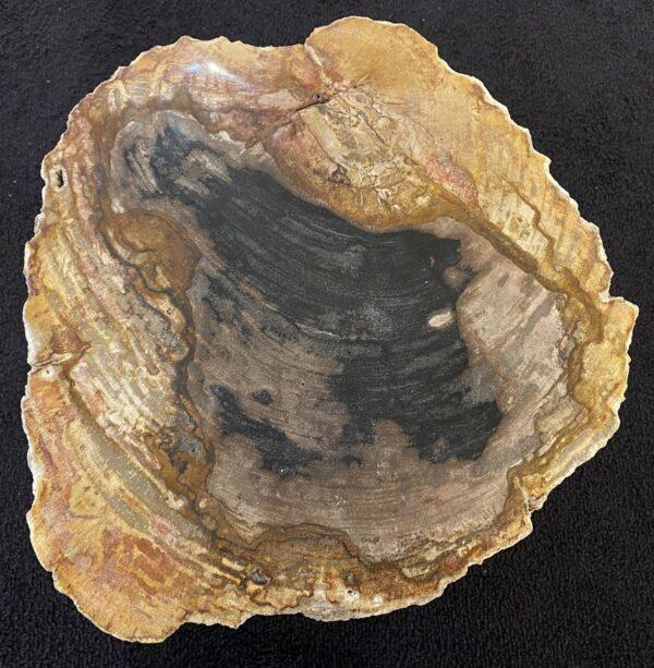 Mesa de centro madera petrificada 34262