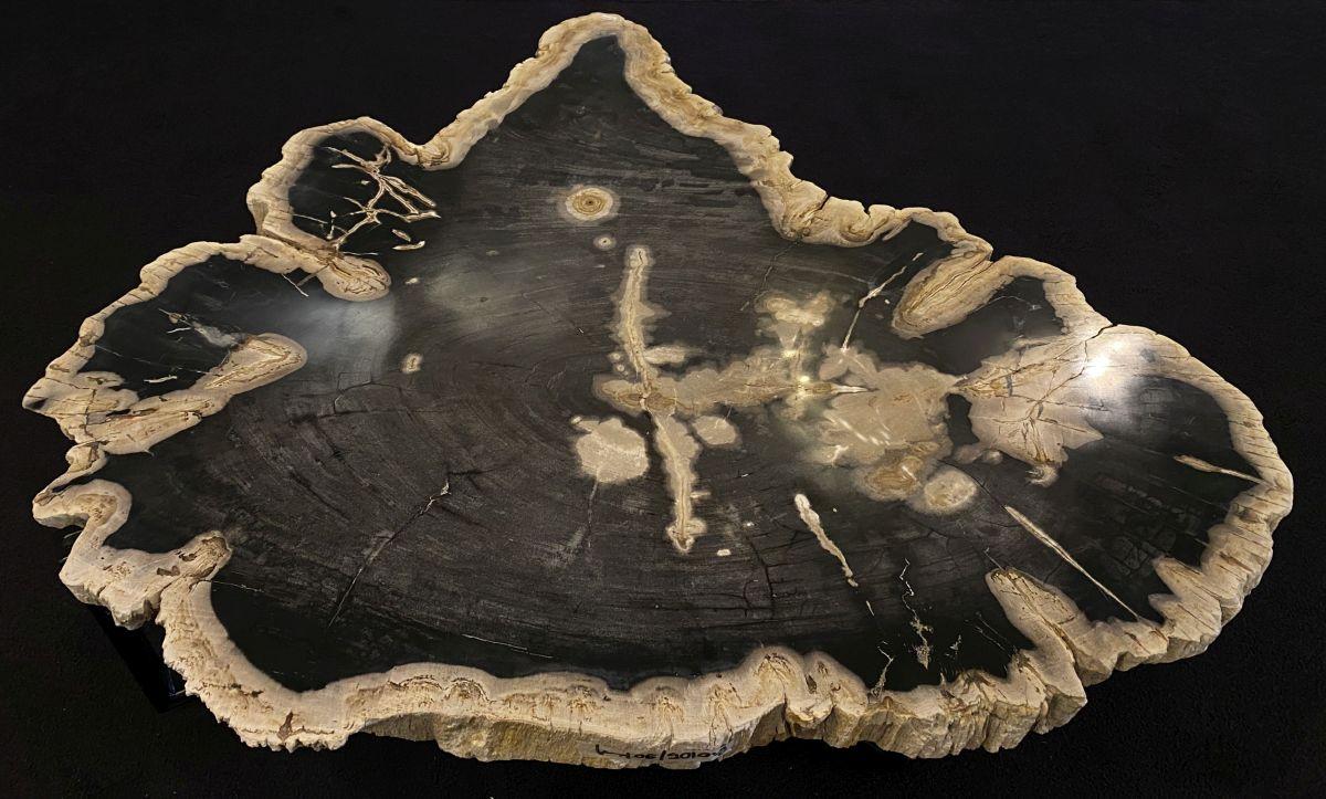 Mesa de centro madera petrificada 34278