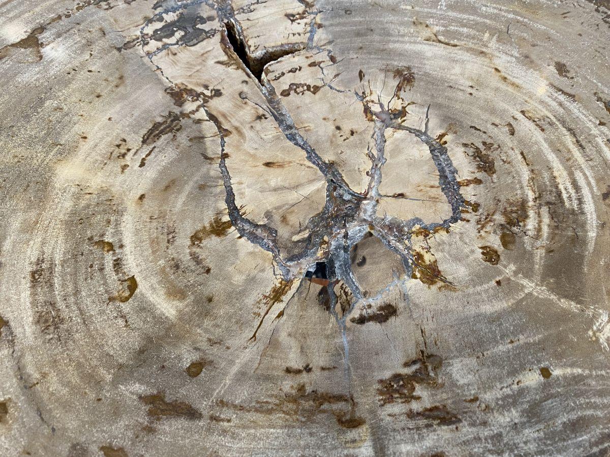 Salontafel versteend hout 34212
