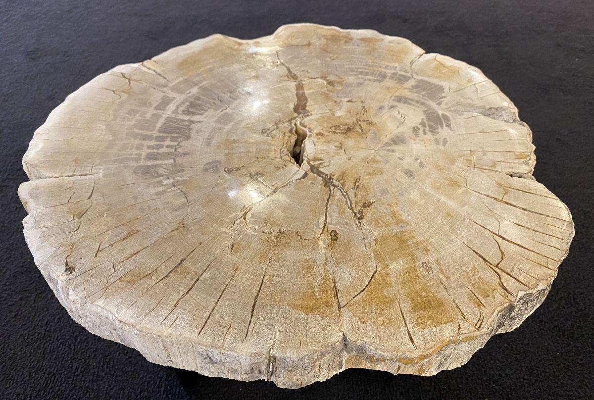 Salontafel versteend hout 34260