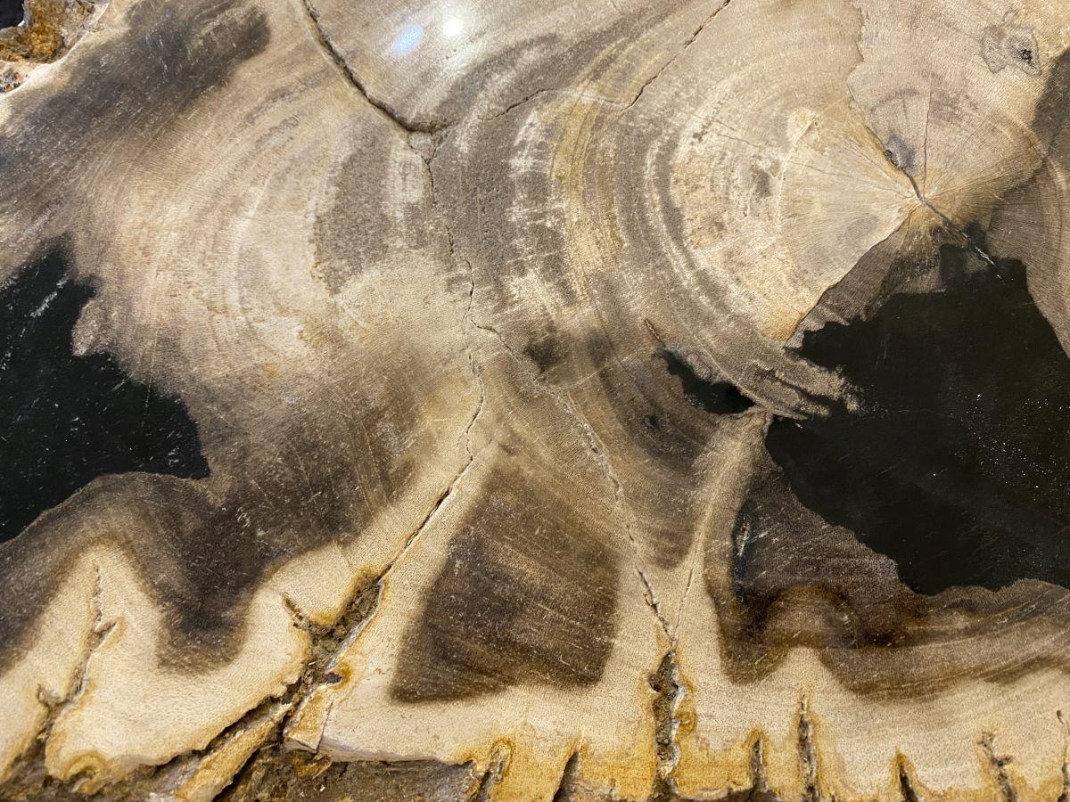 Salontafel versteend hout 34264