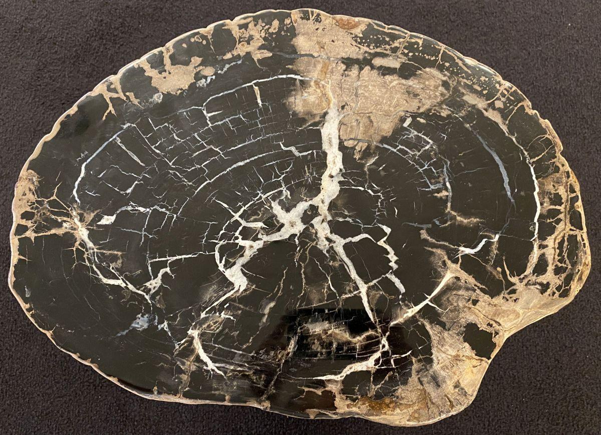 Salontafel versteend hout 34290