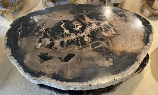 Table basse bois pétrifié 34153