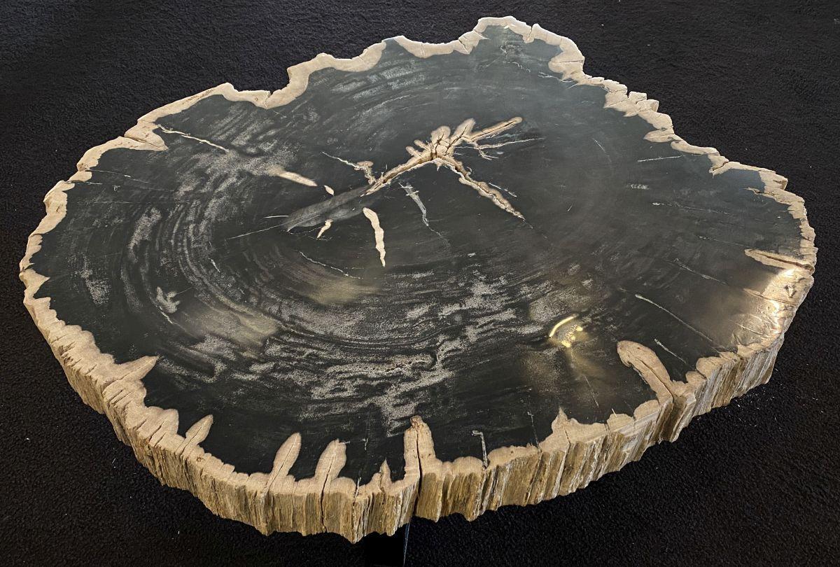 Table basse bois pétrifié 34162