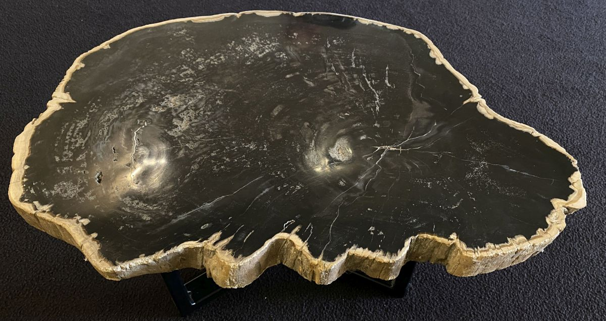 Table basse bois pétrifié 34176