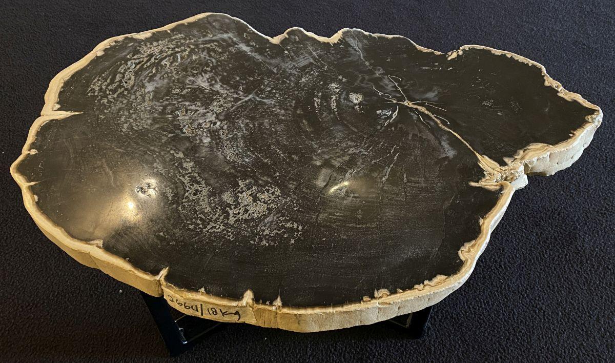 Table basse bois pétrifié 34177