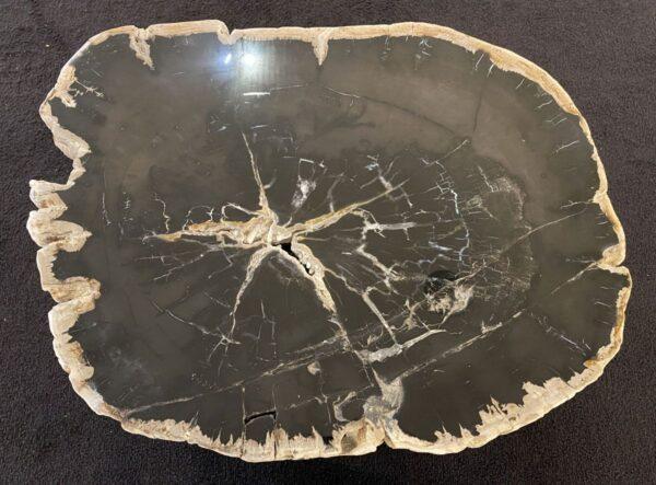 Table basse bois pétrifié 34198