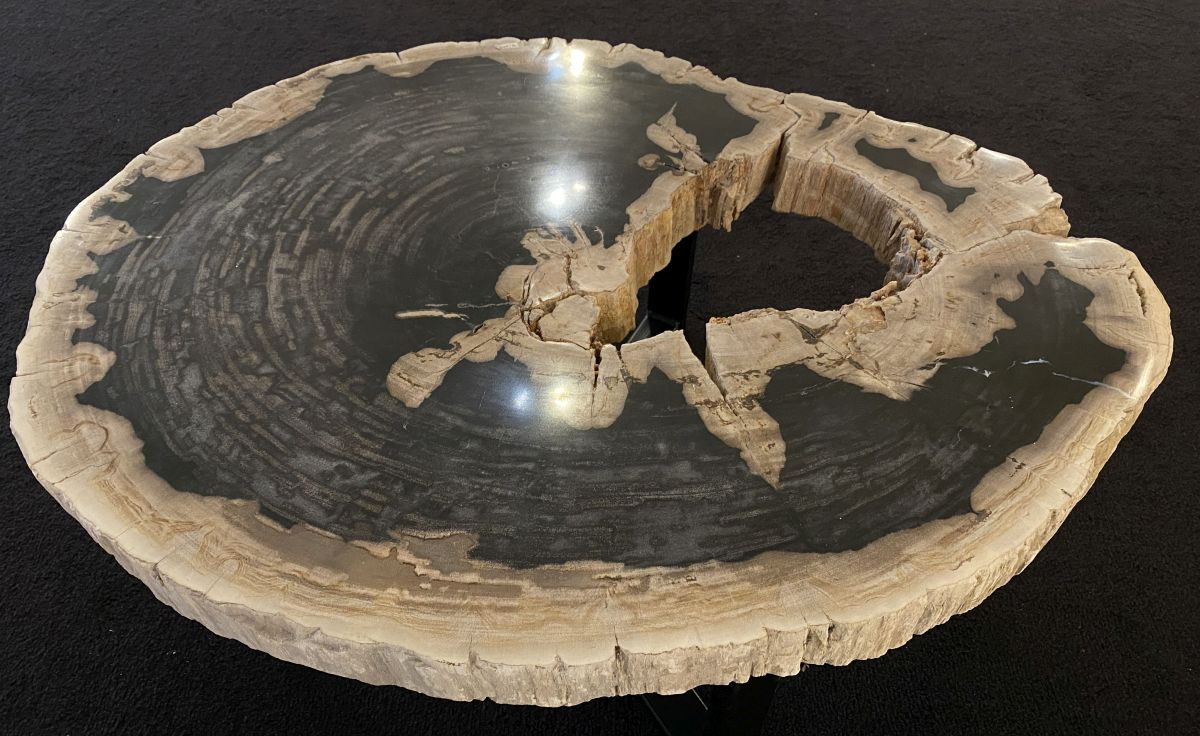Table basse bois pétrifié 34201