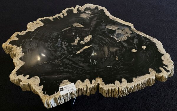 Table basse bois pétrifié 34221