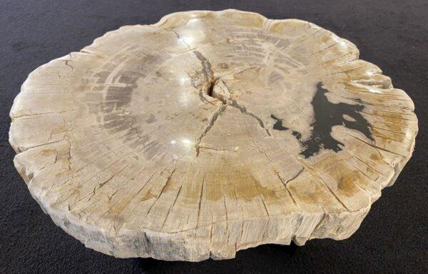 Table basse bois pétrifié 34228