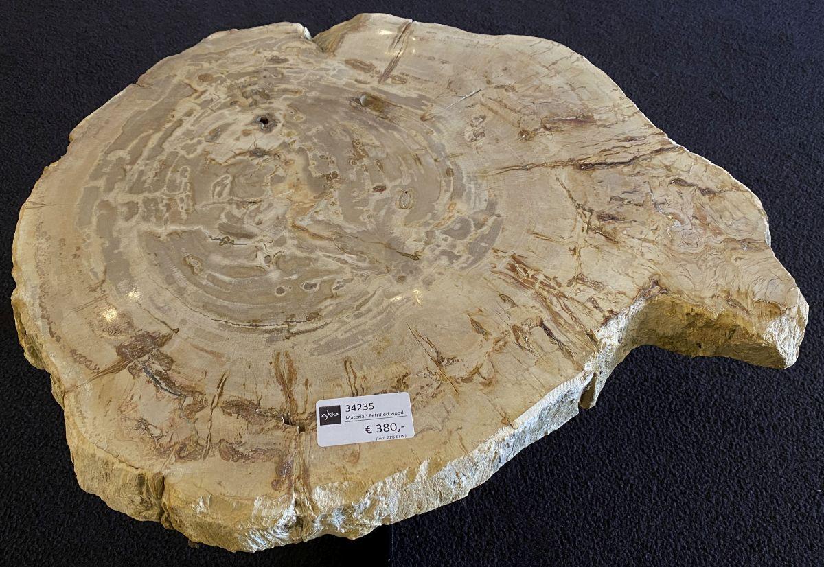 Table basse bois pétrifié 34235