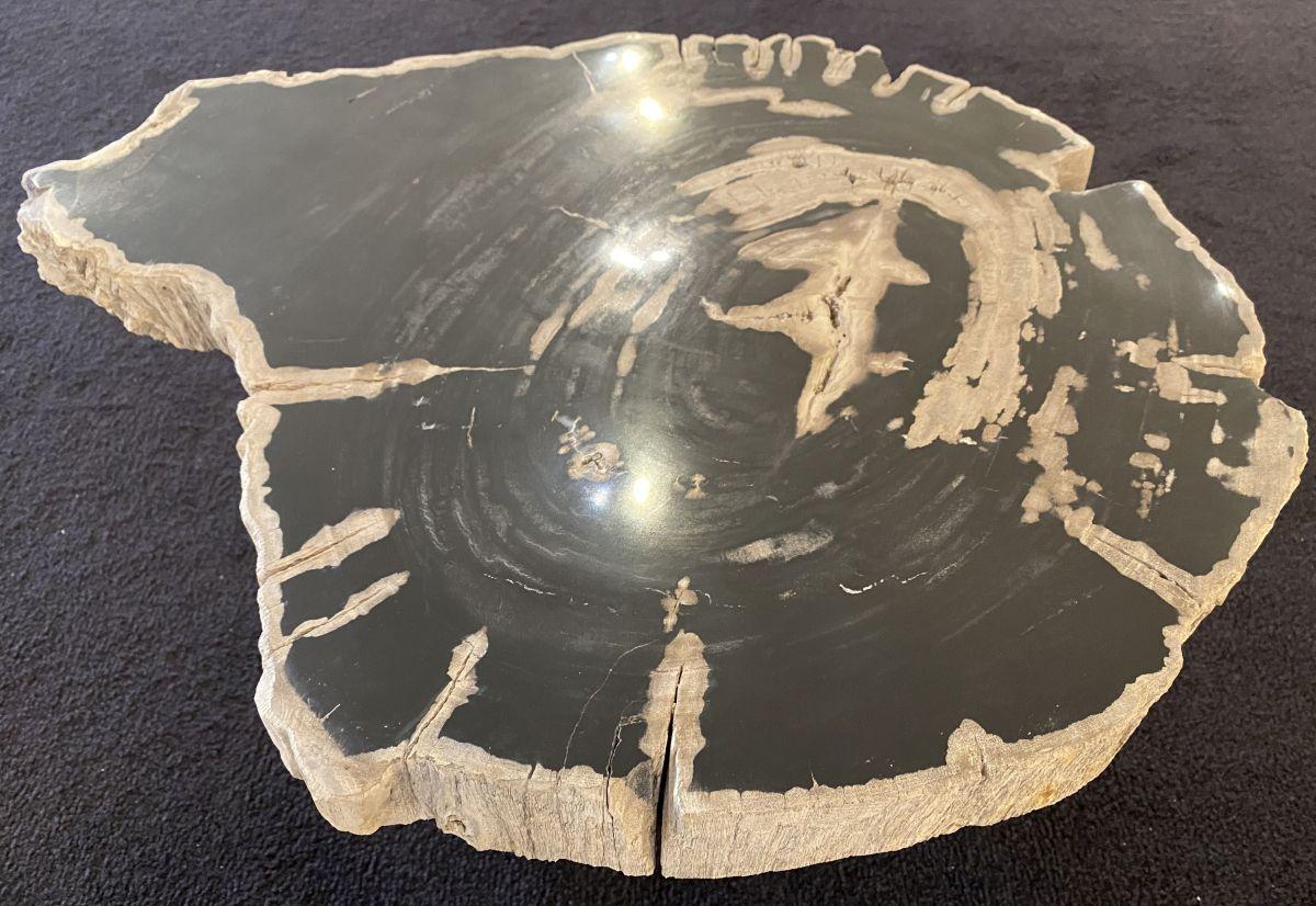 Table basse bois pétrifié 34257