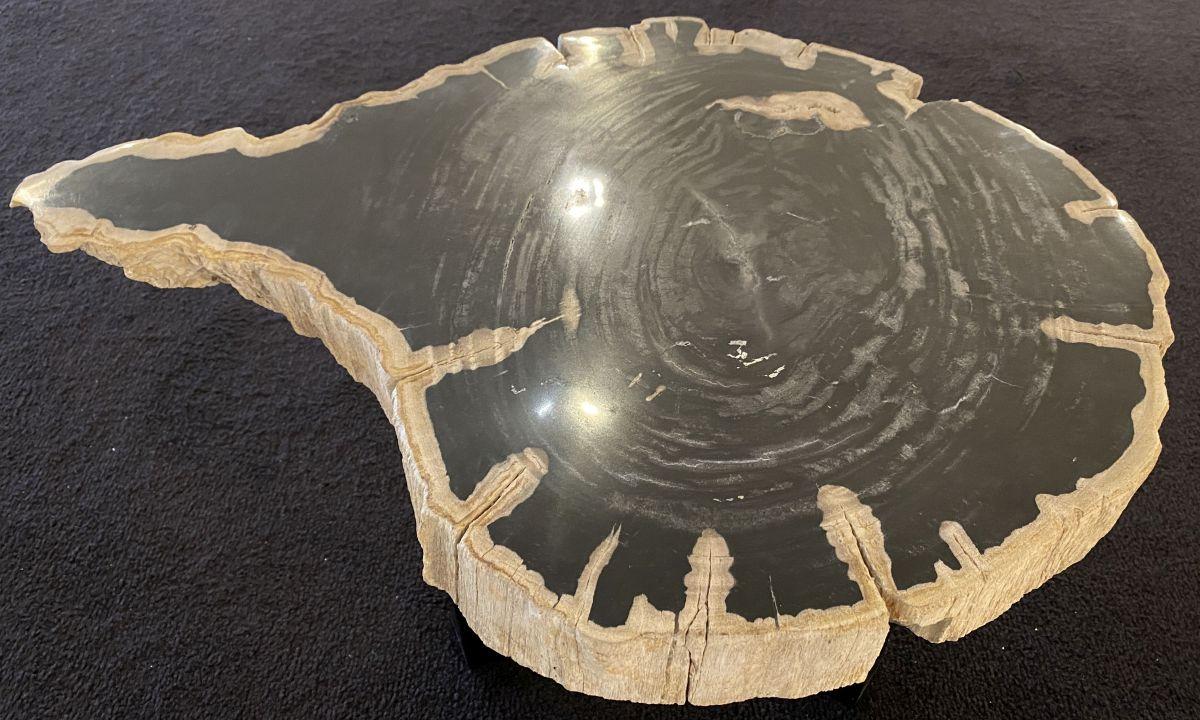Table basse bois pétrifié 34258
