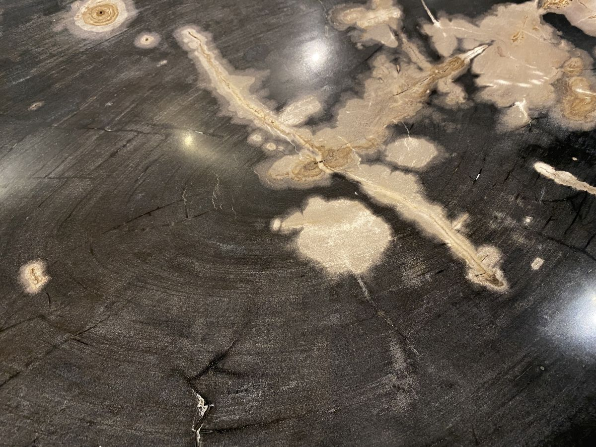 Table basse bois pétrifié 34278