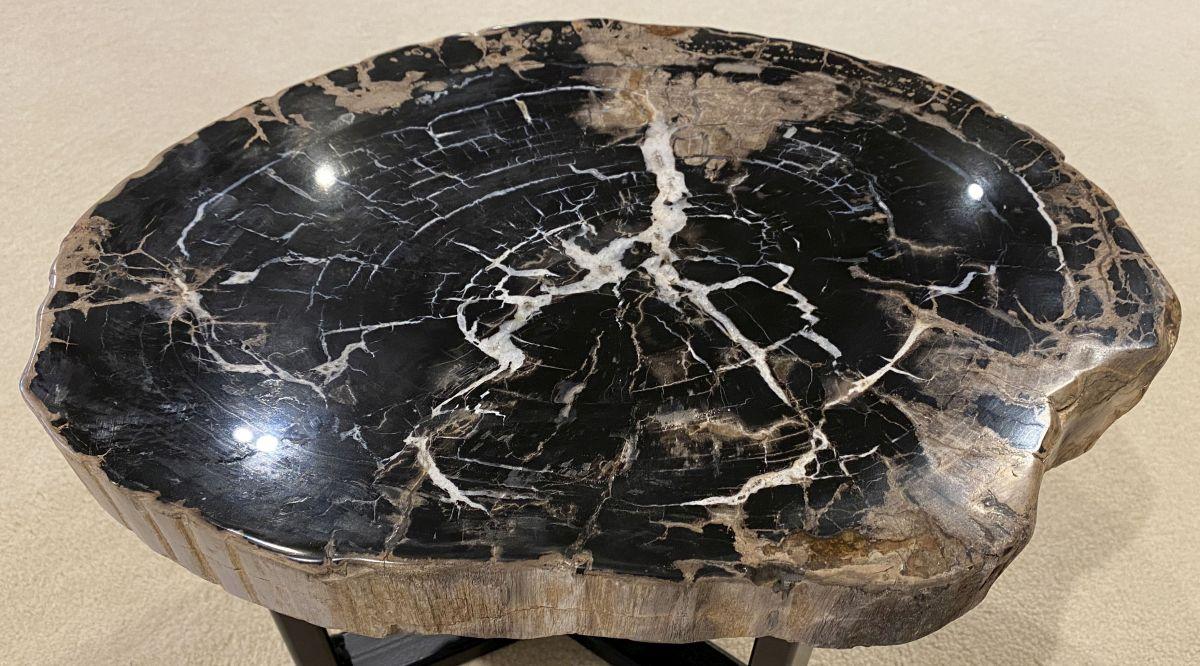 Table basse bois pétrifié 34290