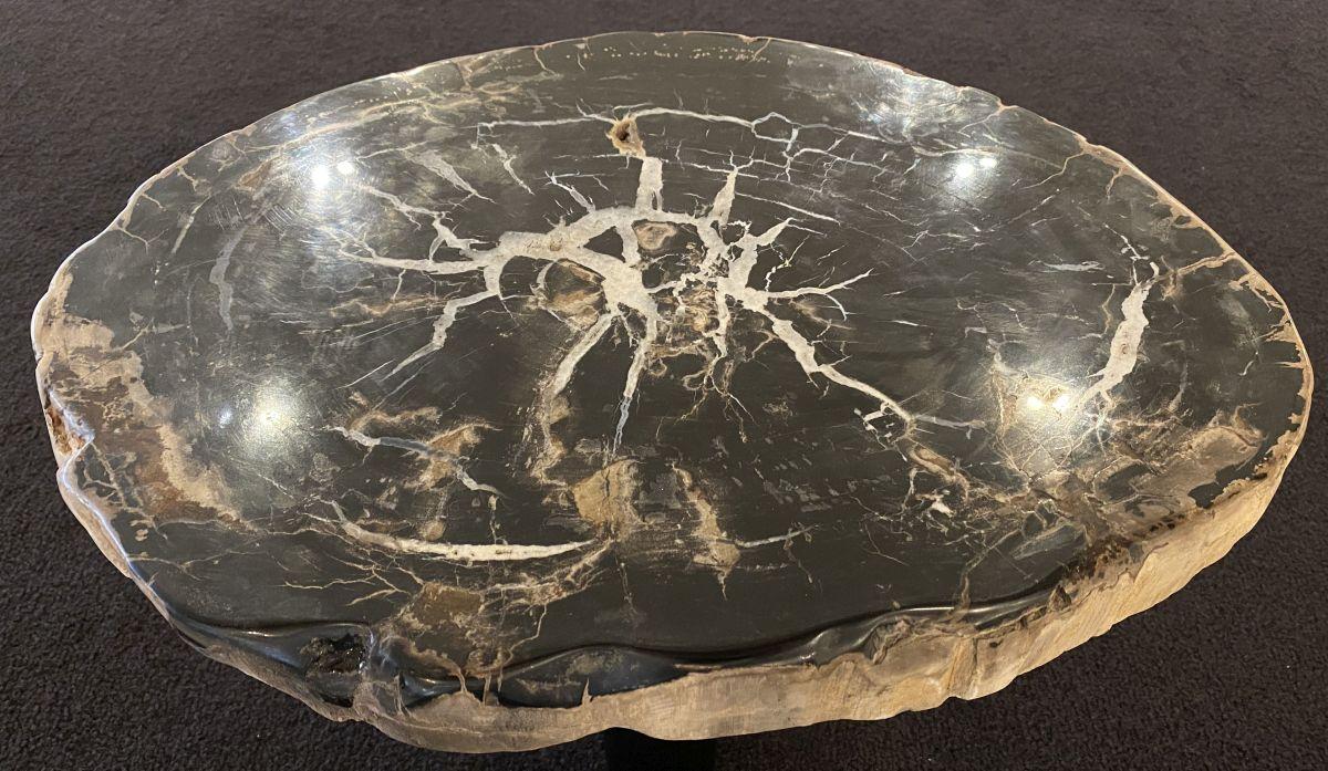 Table basse bois pétrifié 34292